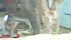 Bangladeshi Peeping Tom 11